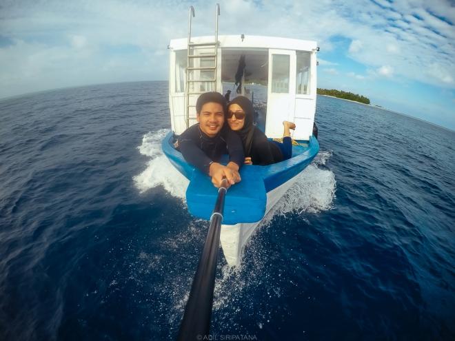 ออกเรือไปดูโลมาช่วงเย็น (50 USD) ได้เห็นโลมาสมใจ