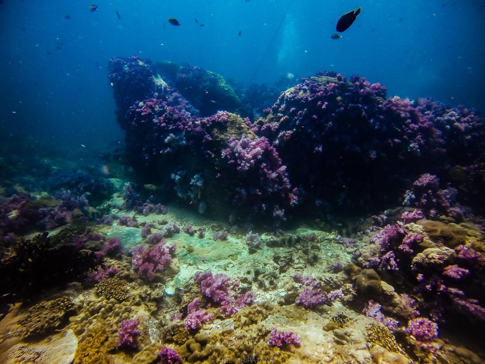 07/04/15 ลักษณะเด่นของ Dive site นี้คือมีก้อนหินแนวตั้งซึ่งมีปะการังอ่อนสีสดสวยเกาะอยู่มากมาย คนจึงขนานนามว่า Stonehenge
